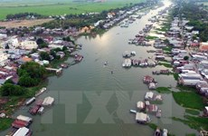 Ministry seeks ideas on Mekong Delta master plan