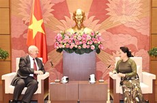 Vietnam-Russia parliamentary ties enjoy positive progress: top legislator
