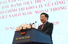 Overseas Vietnamese a key part of nation