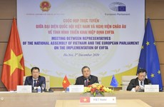 Vietnamese NA, EP discuss EVFTA implementation