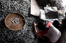 Indonesia intensifies monitoring of fish exports to China