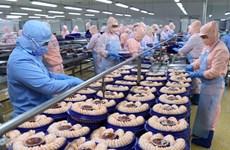 2020 aquatic product exports predicted to hit 8.6 bln USD