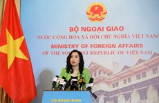 Vietnam yet to conduct commercial flights repatriating overseas Vietnamese: Spokesperson