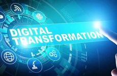 Vietnam Digital Transformation Day slated for mid-December