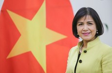 Vietnam attends WIPO Coordination Committee's 79th session