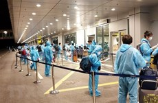 Nearly 280 Vietnamese citizens brought home from Saudi Arabia