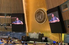 Vietnam introduces draft resolution on Int'l Day of Epidemic Preparedness