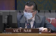 Vietnam shares concerns over persistent insecurity in Congo