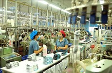 Vietnam to have 12 ecosystems with revenue of 100 billion USD: McKinsey
