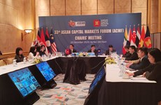 ACMF to issue ASEAN sustainability bond standards