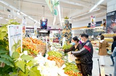 Project supporting farmers in Gia Lai launched