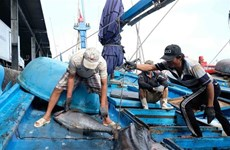 Conservation significant to fisheries resources development: official