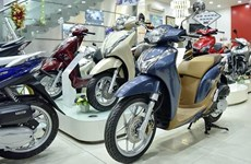 Honda Vietnam's motorbike, auto sales up in November