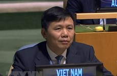 Vietnam pledges to further contribute to UN Mission in South Sudan
