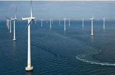 German wind power developer eyes offshore project in Binh Dinh