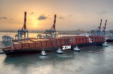 Pandemic takes toll on Vietnam's exports to Israel: trade office