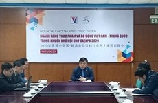 Vietnam-China trade believed to have ground to reach new height