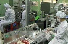 Vietnam, India eyes stronger cooperation in pharmaceuticals