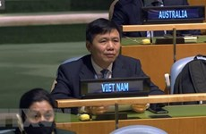 Vietnam, Russia, South Africa mark 60 years of Declaration on Decolonialisation