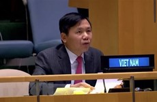 Vietnam performs UNSC responsibilities well: Ambassador