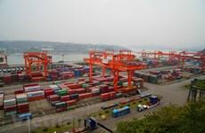 Economic ties between Chongqing, Vietnam growing