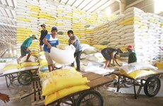 11-month rice export down in volume, up in value