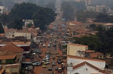 Vietnam voices concern about security instability in Central African Republic