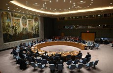 UNSC terminates mandate of UN-African Union hybrid operation in Darfur