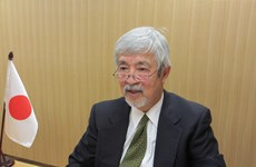 Vietnam excellent as ASEAN Chair despite pandemic: Japanese expert