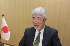 Vietnam excellent as ASEAN Chair despite pandemic: Japanese expert