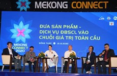Mekong Delta seeks to enter global value chains