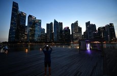 Singapore's deflation eases in November