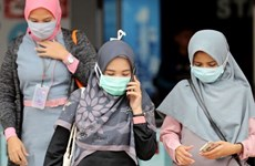 Indonesia posts highest COVID-19 daily death toll