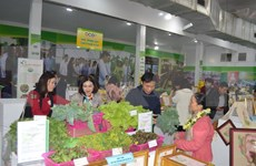 Hanoi recognises 630 OCOP products over last 3 years