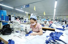 HCM City's 2020 economic growth at 1.39 percent