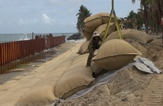 Long An to spend over 1 trillion VND on anti-erosion projects