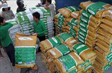 Cambodia's rice exports surge 11 percent in 2020