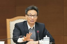 Turning cultural heritage into strength for national development: Deputy PM Dam