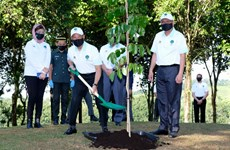 Malaysia PM launches tree planting campaign