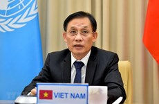 Vietnam prioritising enhanced cooperation between UN, regional organisations