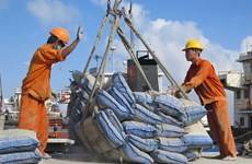 Domestic cement sales forecast to increase but export to slow down