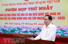 Vietnam Fatherland Front to uphold consultation role in general election