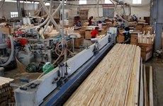 Vietnam aims to earn 14.5 billion USD from forestry exports