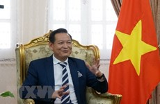 Overseas Vietnamese in Egypt believe in homeland's future