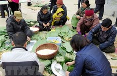 Tet activities set for ethnic cultural village
