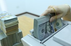 Reference exchange rate revised down by 5 VND