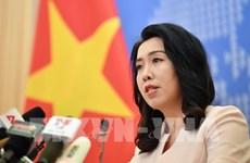 Countries must respect Vietnam's sovereignty in East Sea: spokesperson