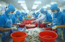Ben Tre targets 6.23 pct. in export growth this year