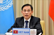 Building modern, extensive diplomacy: Deputy Foreign Minister