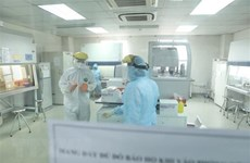Thirty one cases of COVID-19 detected on February 2